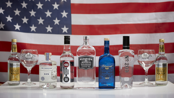 The American Gin Collection